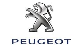Peugeot Silindir Kapağı